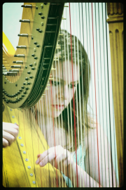 Performing Musician Harpist for Events in Tulsa OK